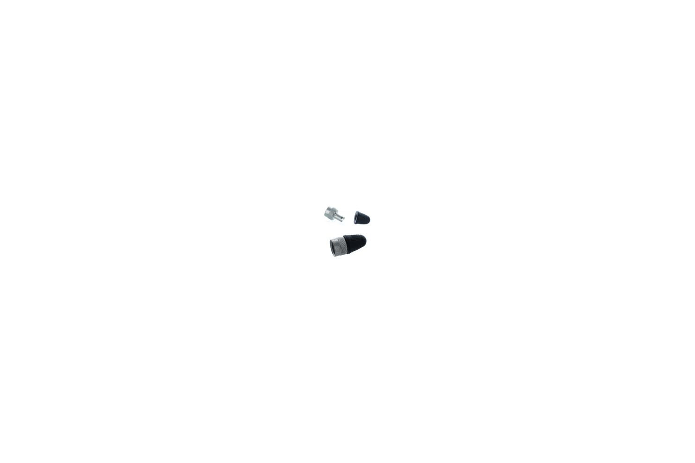 Valve Stem Cap with Core Remover