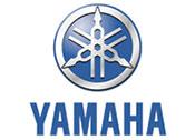 Yamaha MAHLE Filters